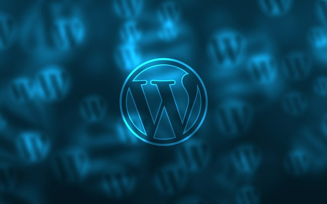 WordPress newbie errors